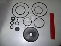 Ремкомплект клапана управления с 2- проводов привода (12 наименования) (производитель Россия) 100.3522009