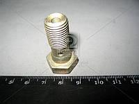 Болт ГАЗ муфты соединяющей тормозная трубо проводов 24,53,3307 (болт-штуцер) (производитель ГАЗ) 51-3506012