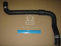 Патрубок радиатора (производитель Mobis) 254143K500
