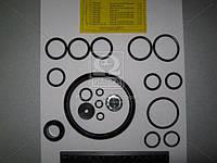 Рем комплект ПГУ КРАЗ 6510,-6443, МАЗ (без чашки) (Производство Россия) 11.1602410