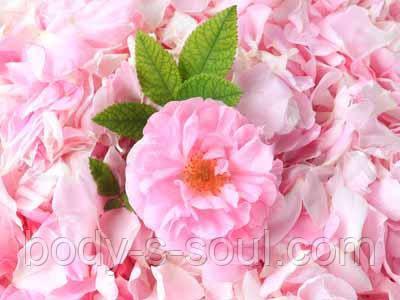 Віддушка для мила Чайна Троянда, Floressence