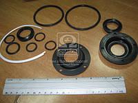 Рем комплект силового цилиндра ГУР-ЦГ 80 с фторопластом (8 наименования) (Производство Россия) 280-3405