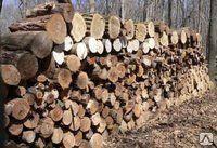 Распил  деревьев по частям