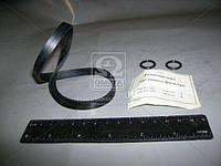 Ремкомплект фильтра масляного (2 наименования) (производитель Россия) 740.1012000