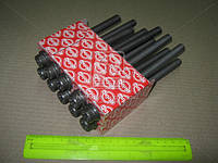 Болт головки блока (комплект) FORD1.8TDCI C9DA/C9DB/C9DC/FFDA/BHPA/HCPA/HCPB (Производство Elring) 027.850