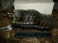 Вкладыши коренные Н1 СМД 19/20/22/24 АО20-1 (производитель ЗПС, г.Тамбов) А23.01-98-20/22сб