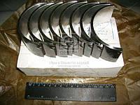 Вкладыши шатунные Р1 Д 40/48/65 АО20-1 (производитель ЗПС, г.Тамбов) А23.01-81-65сб
