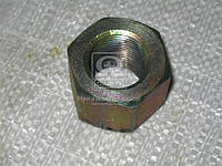 Гайка стремянки М27х2 (производитель Самборский ДЭМЗ) 5511-2912416
