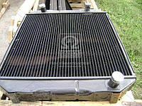 Радиатор водяного охлажденияЛАЗ 699 (4-х рядный) (производитель ШААЗ) Р699-1301010