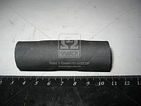 Патрубок радиатора маслянный МТЗ (производитель МТЗ) 70-1405013
