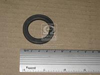 Шайба гроверная стремянки задний рессоры КАМАЗ (10 тн.) (27 мм) (производитель Россия) 252164