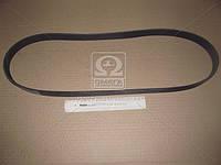 Ремень поликлиновый (Производство Contitech) 8PK1365