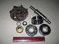 Ремкомплект насоса водяного 260-1307116 и их модификации (Производство БЗА) Р/К-6