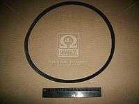 Ремень привода генератора (производитель БРТ) 1111-3701720Р