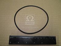 Кольцо уплотнительное фильтра масляного ЕВРО (производитель Россия) 7406.1012083