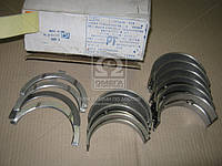 Вкладыши коренные Р1 Д 65 А-О20 (производитель ЗПС, г.Тамбов) А23.01-95-65сбБ