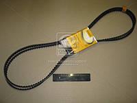 Ремень клиновой (комплект 2шт) (Производство ContiTech) 10X1475S2