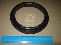 Сальник коленвала REAR R.V.I. MIDR 06.20.45 (150X172X13) (Производство Payen) NF840