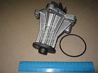Насос водяной (Производство HEPU) P220