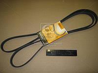 Ремень поликлиновой (Производство ContiTech) 6PK2260