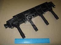 Катушка зажигания (Производство BERU) ZS259