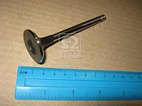 Клапан выпускной VAG 1,9D/TD 96- 31х7х95,6 (пр-во AE) V94109