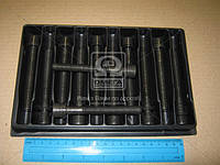 Комплект болтов двигателя (Производство PAYEN) HBS024