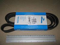 Ремень поликлиновый (Производство DAYCO) 6PK1550