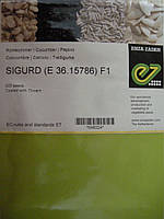 Семена огурца  Сигурд F1 500с, фото 1