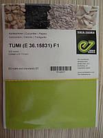 Семена огурца  Туми F1 500с, фото 1