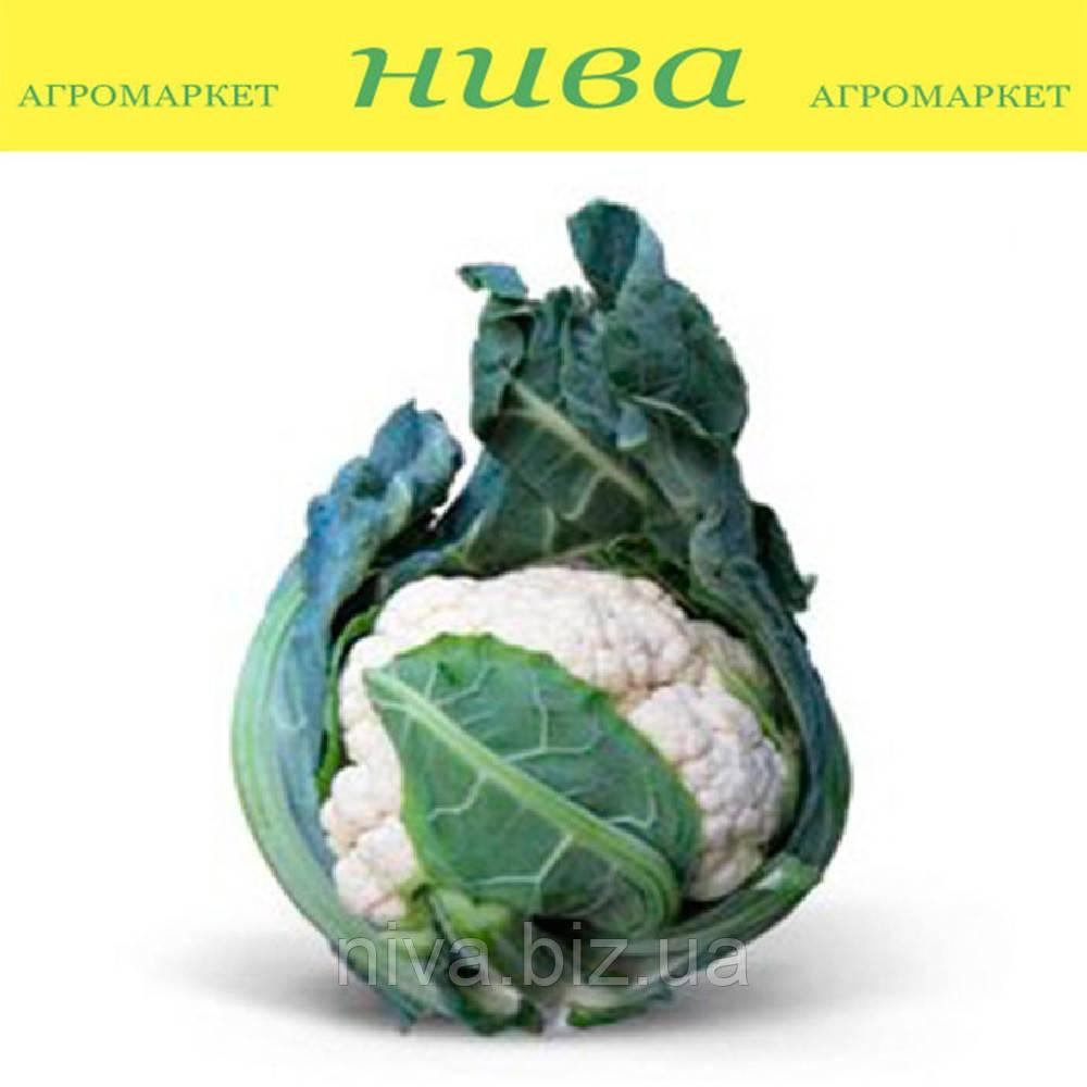 Мисора KS 22 F1 cемена капусты цветной Kitano Seeds 1 000 семян