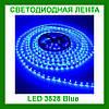 Лента светодиодная синяя LED 3528 Blue 60RW - 5 метров в силиконе!Акция