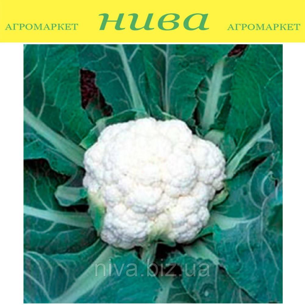 Фридом F1 (Freedom F1) семена капусты цветной поздней Seminis 2 500 семян