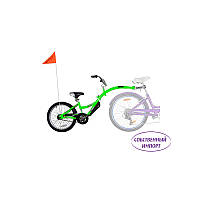 Велосипед-прицеп WeeRide® Co-Pilot (IS), фото 1