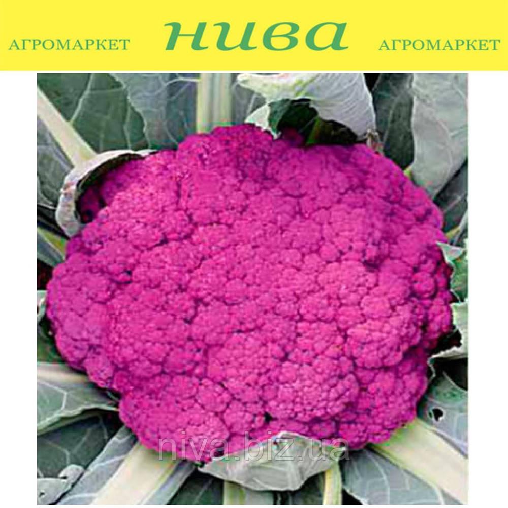 Пурпурная Сицилийская семена капусты цветной фиолетовой Euroseed 500 г