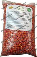 Семена кукурузы Любава 279 МВ, 1 кг