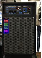 Портативная колонка на аккумуляторе QQ-10 с радиомикрофоном (USB/Bluetooth/12V)