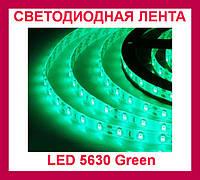 Лента светодиодная зеленая LED 5630 Green - 5 метров в силиконе