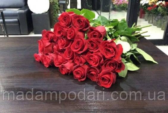 Доставка цветов днепру купить садовые цветы в курске