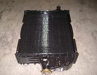 Радиатор водяного охлаждения МТЗ Латунь