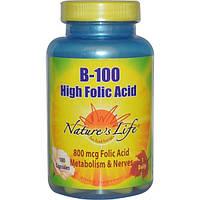 Natures Life, B-100, Фолиевая кислота, 100 капсулы
