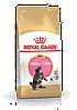 Royal Canin Maine Coon Kitten 4 кг для котят мейн кун