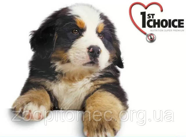 1st Choice для собак и щенков