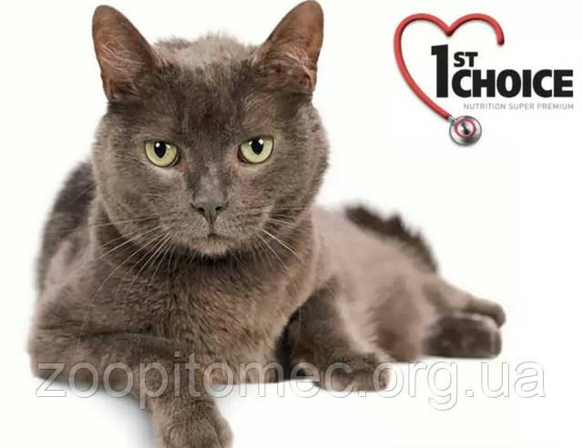 Корм 1st Choice для кошек, котят.