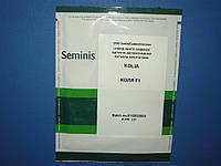 Семена капусты Колия KOLIA F1 2500 с, фото 1
