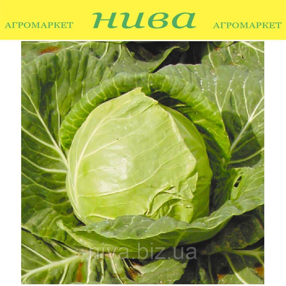 Іюньська насіння капусти б/к ранньої Semenaoptom 250 г