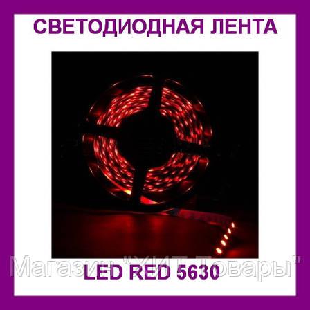 Лента светодиодная красная LED 5630 Red - 5 метров в силиконе!, фото 2