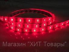 Лента светодиодная красная LED 5630 Red - 5 метров в силиконе!, фото 3