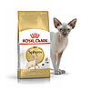 Royal Canin Sphynx 10 кг для сфинксов