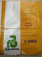 Семена огурца  Ленара F1 1000с, фото 1